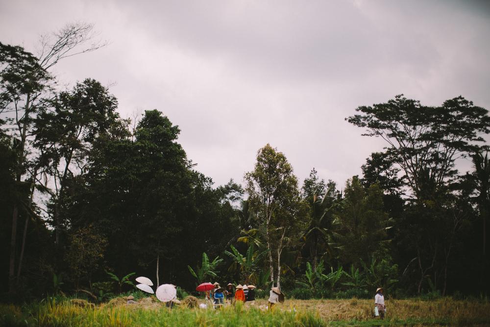 Bali Aug 15-Dean Raphael-28.jpg