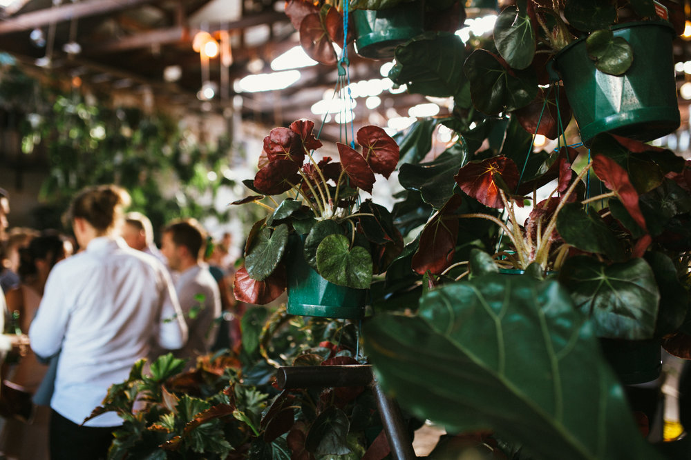 D+S-Melbourne Wedding Photographer-Glasshaus-Dean Raphael-93.jpg