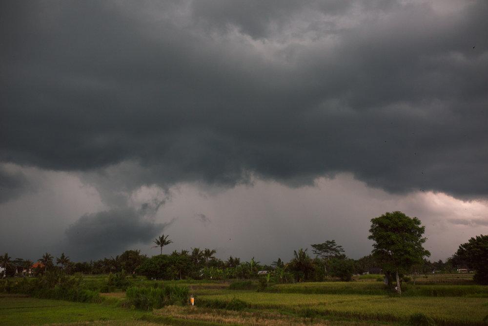 Ubud Bali 2017-Dean Raphael-5.jpg