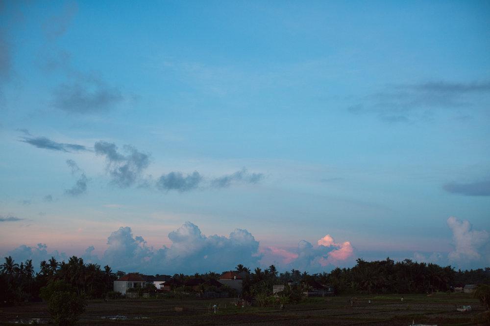 Ubud Bali 2017-Dean Raphael-10.jpg
