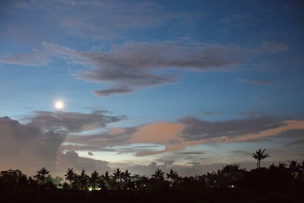 Ubud Bali 2017-Dean Raphael-12.jpg