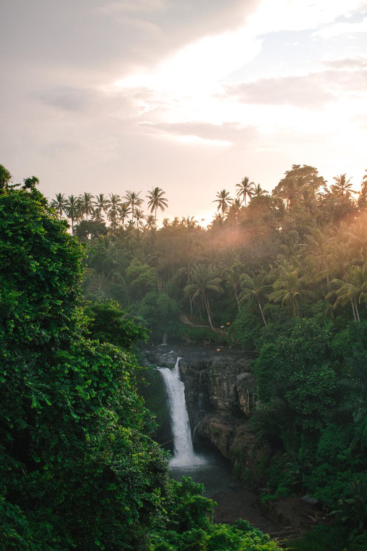 Ubud Bali 2017-Dean Raphael-37.jpg