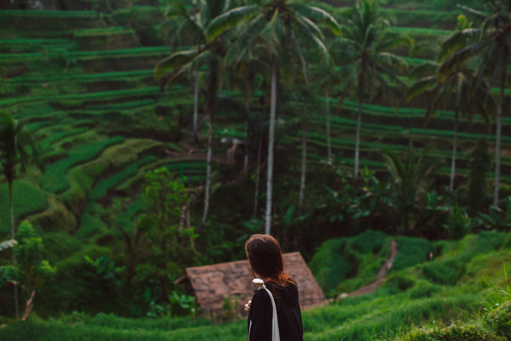 Ubud Bali 2017-Dean Raphael-83.jpg