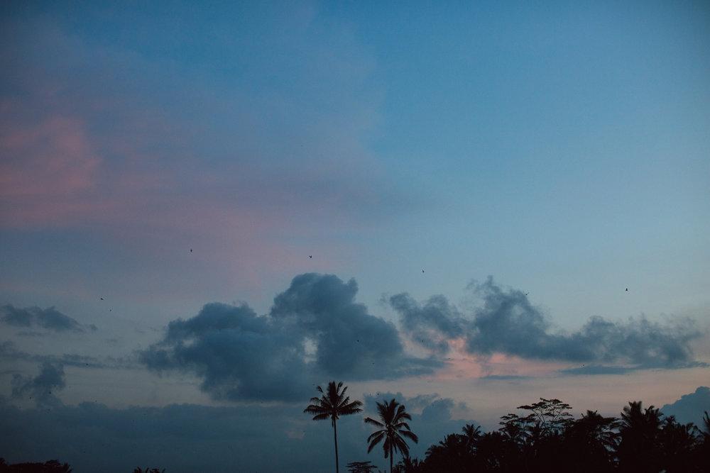 Ubud Bali 2017-Dean Raphael-96.jpg