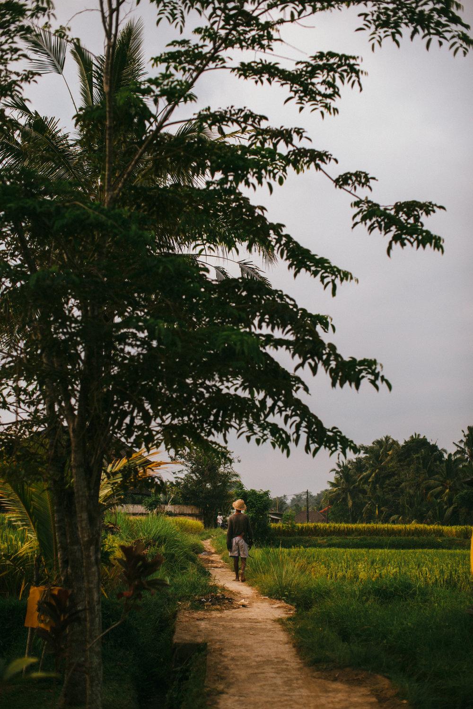 Ubud Bali 2017-Dean Raphael-124.jpg