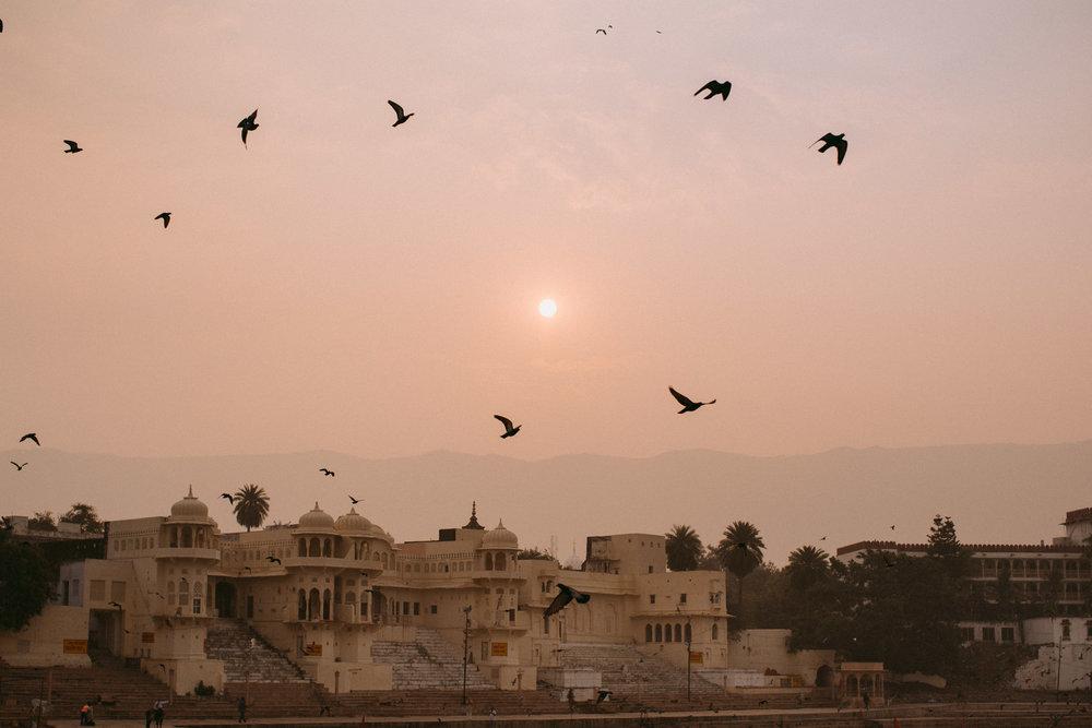 Pushkar Nov 2017-Dean Raphael Photography-1.jpg
