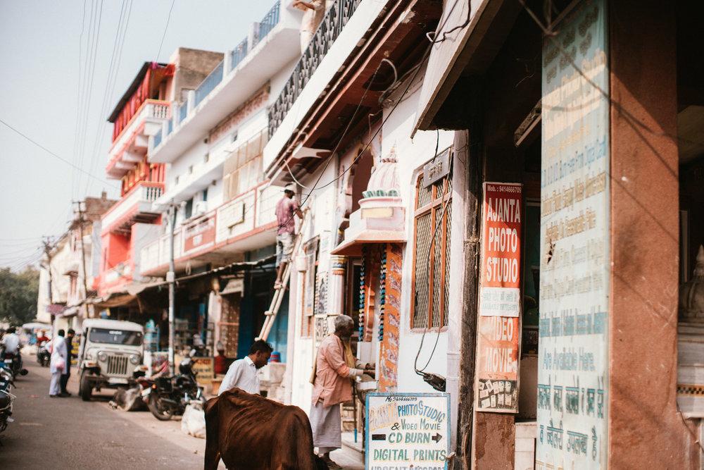 Pushkar Nov 2017-Dean Raphael Photography-18.jpg