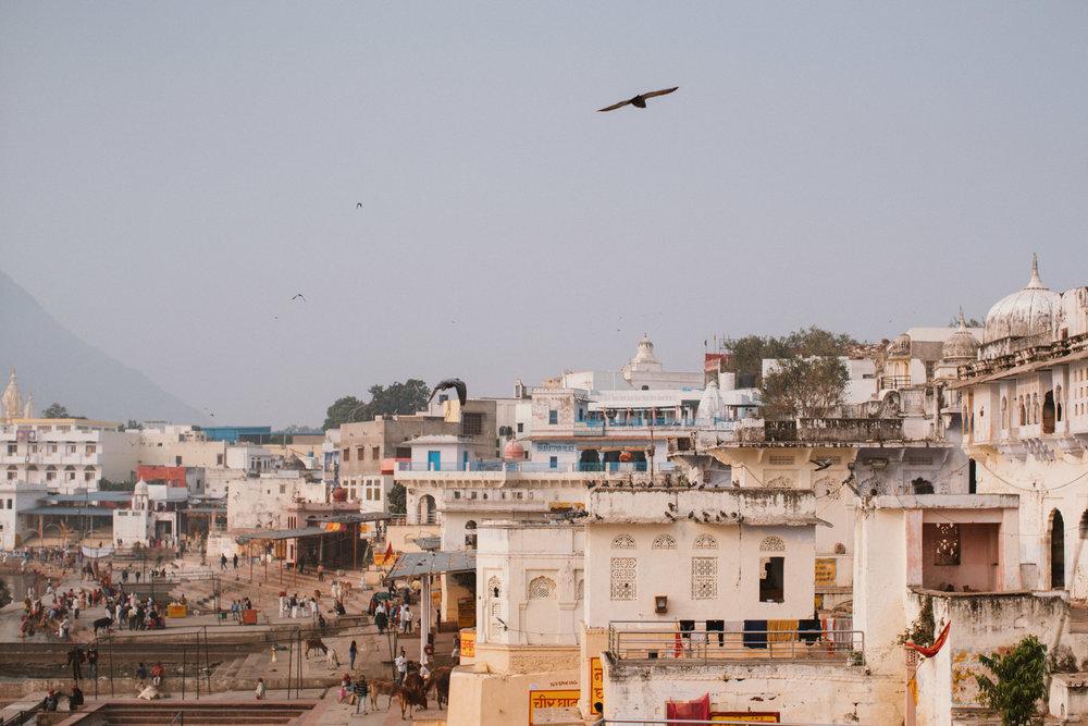 Pushkar Nov 2017-Dean Raphael Photography-46.jpg