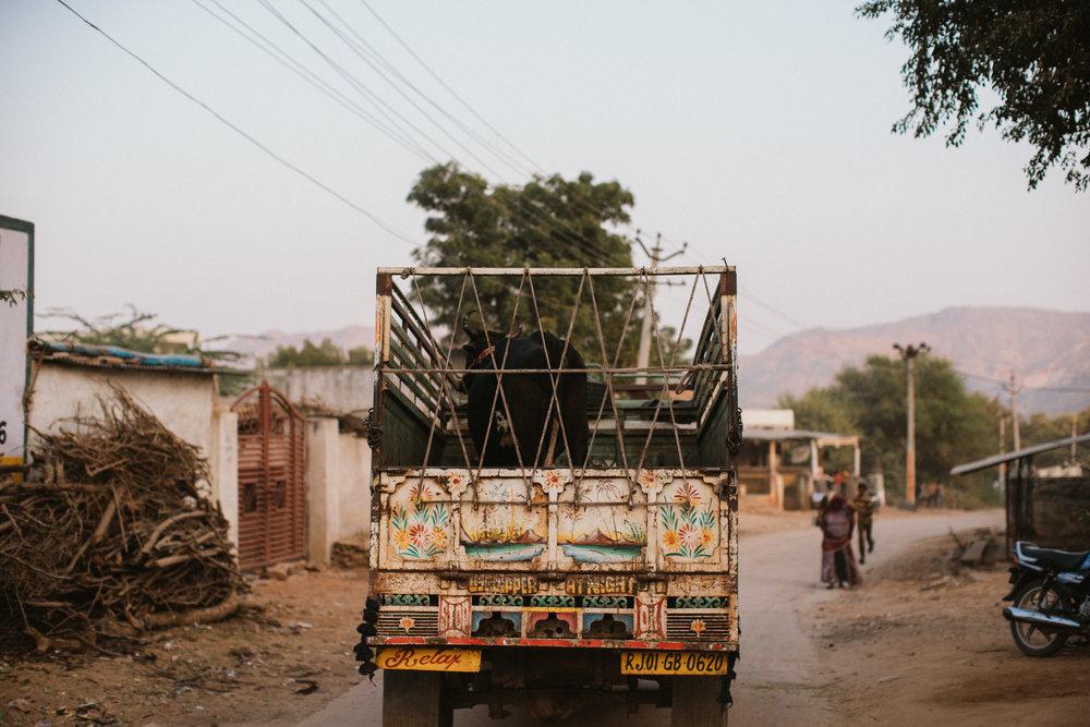 Pushkar Nov 2017-Dean Raphael Photography-121.jpg