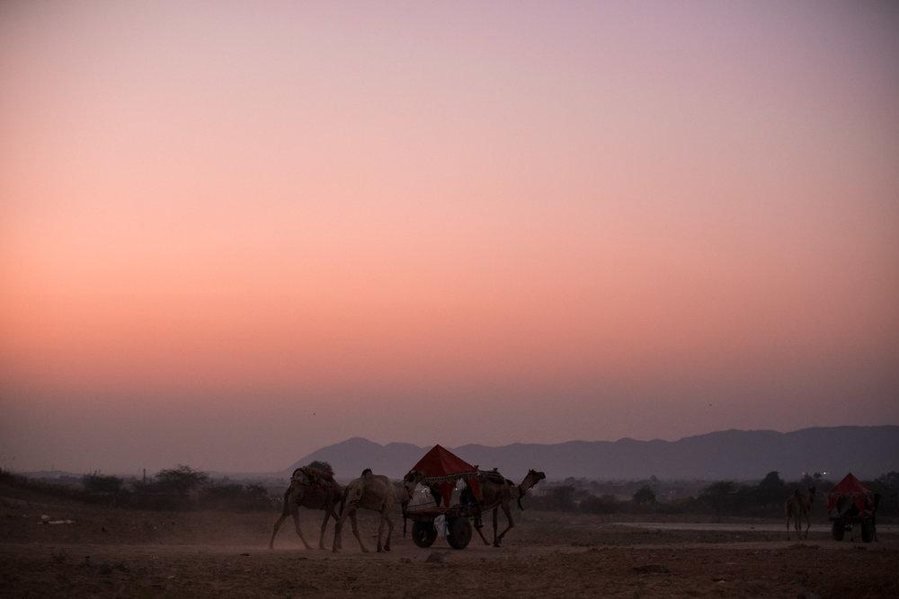 Pushkar Nov 2017-Dean Raphael Photography-142.jpg