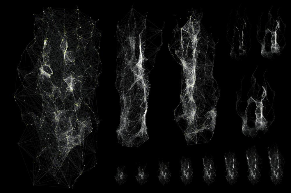 Swarm Variation