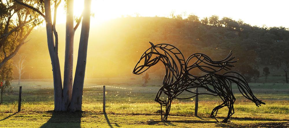Pegasus by Tobias Bennett