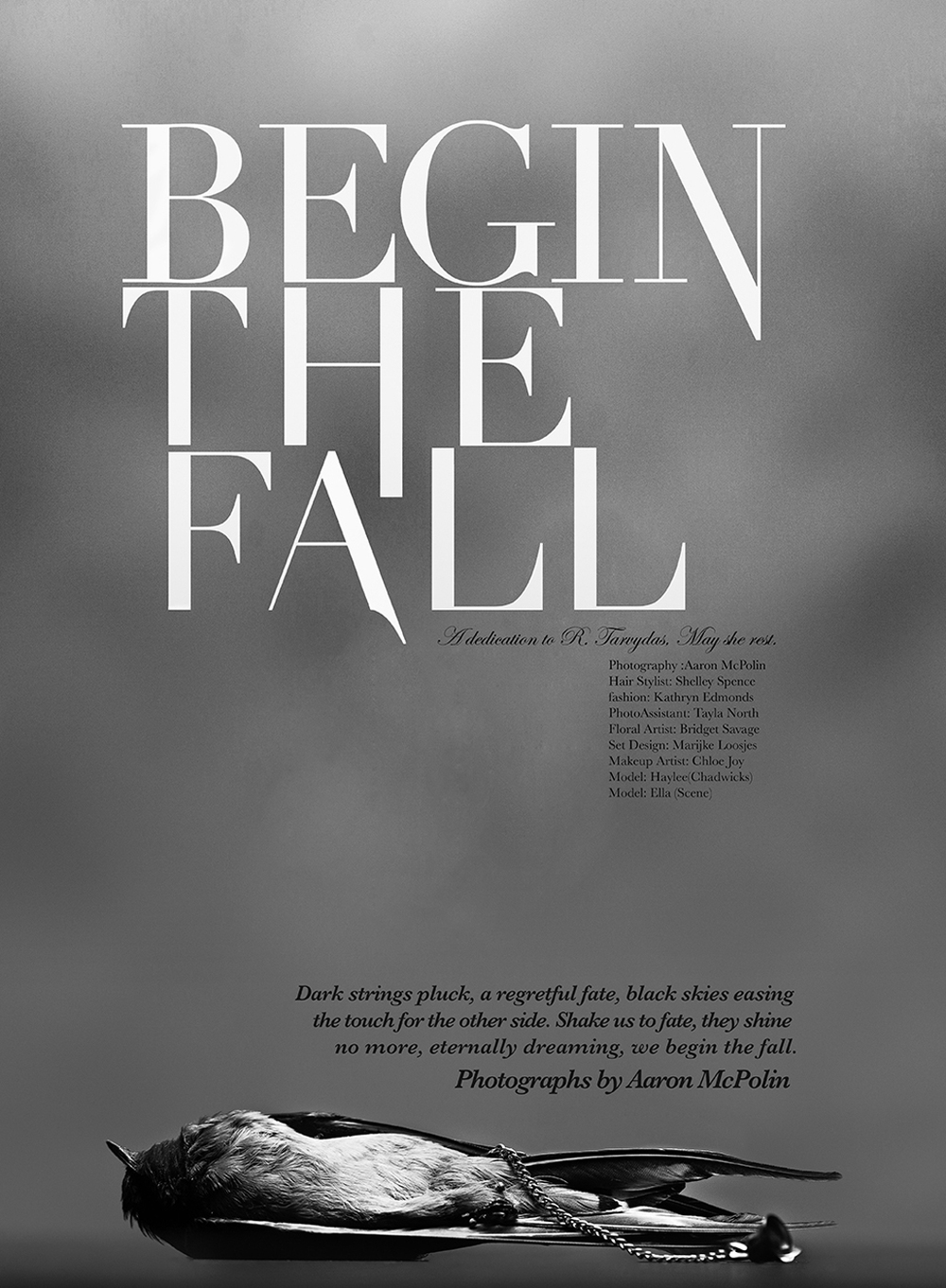 Begin-The-Fall-By-Aaron-McPolin-2.jpg
