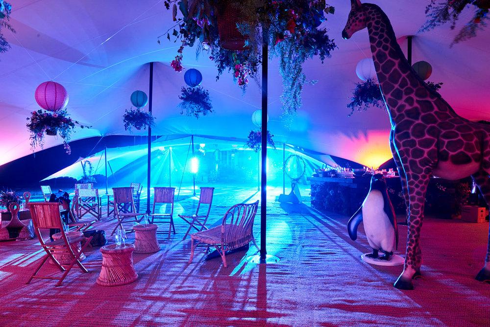 Bolter Design event design Giraffe & Penguin