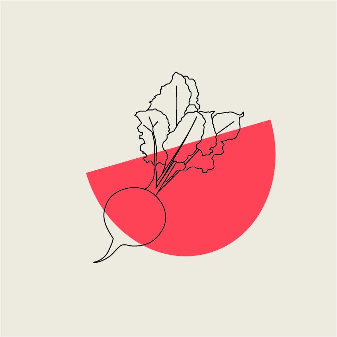 Spook_Illustrations_v2-29.jpg