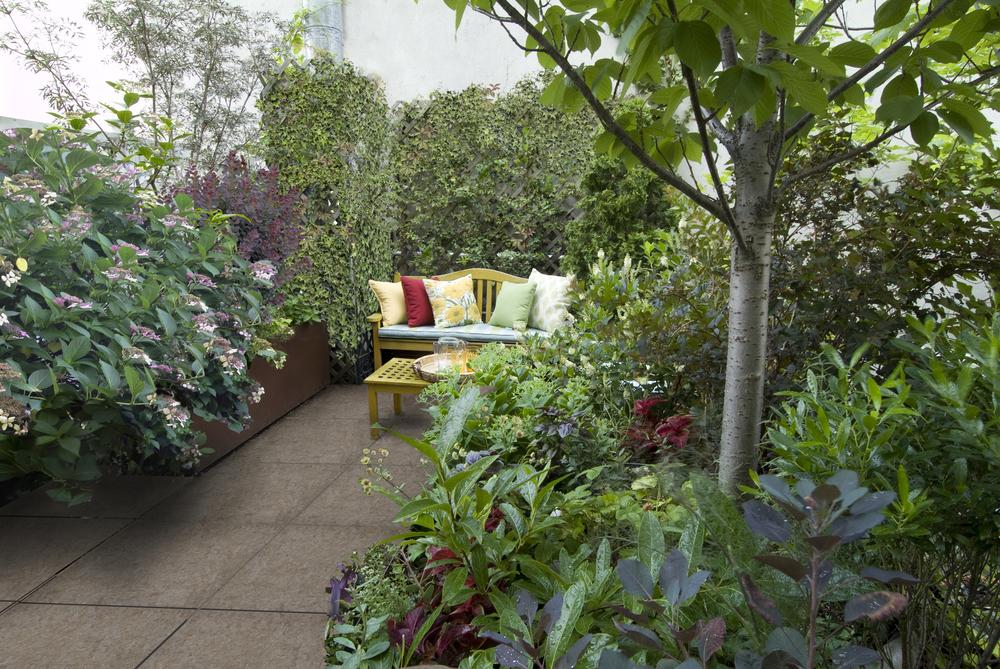 Yellow bench in roof garden