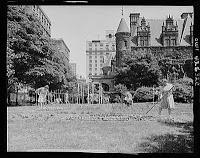 new-york-victory-garden.jpg