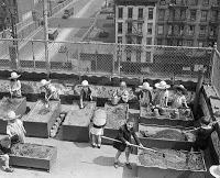 kids-rooftop-garden.jpg