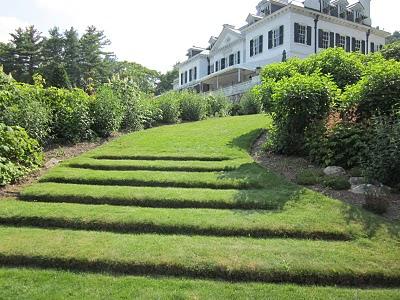 Grass steps