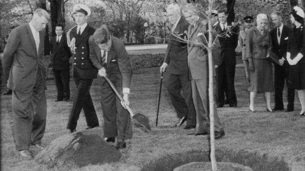 Bend those knees!JFK using poor technique to shovel, given his bad back.