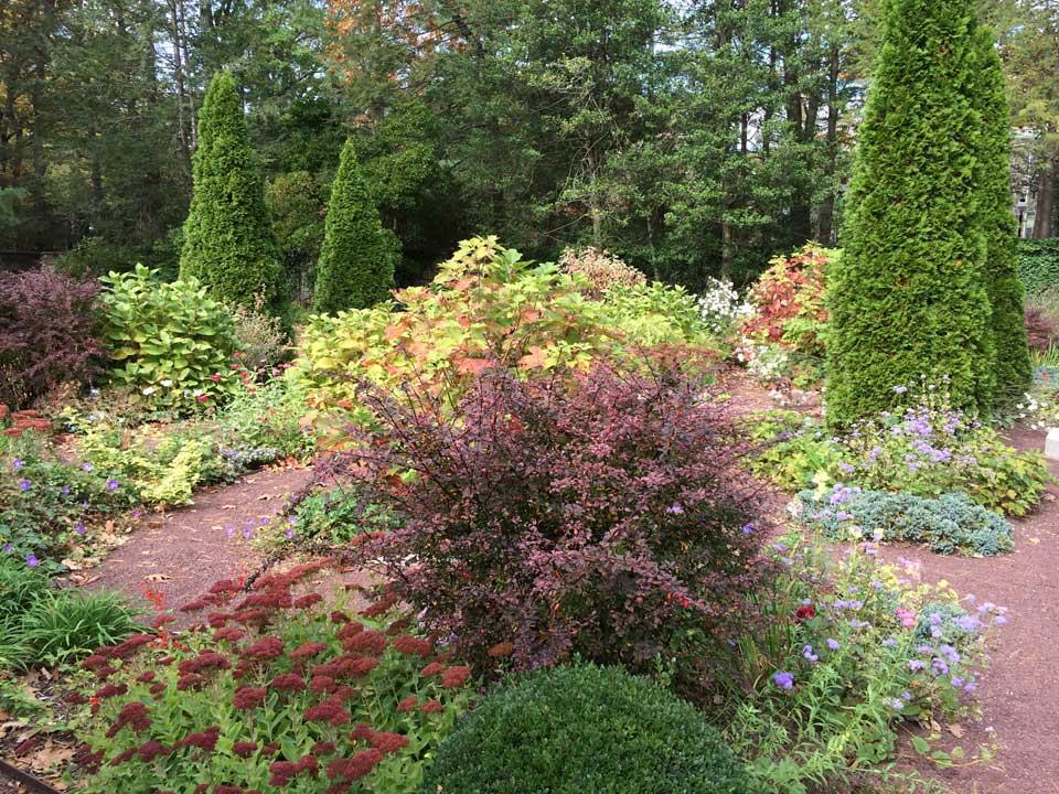 Berberis, sedum, juniperus squamate, hydrangea, ageratum, geranium macalatum all provide an array of color. Photo ©ToddHaimanLandscapeDesign2014