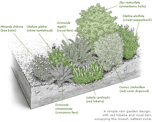 7 SOLUTIONS TO DRAINAGE PROBLEMS IN THE GARDEN — Todd Haiman ... on storm drain, landscape architecture, water garden, dry well design, constructed wetland, french drain design, dry well, gasification design, rain illustration, water efficiency, rain construction, rain gardens 101, rain art drawings, impervious surface, rain roses, bioswale design, french drain, permeable paving, green infrastructure, butterfly garden, green wall, green roof, rain harvesting system design, rain barrels, rain gutter downspout design, rain water design,