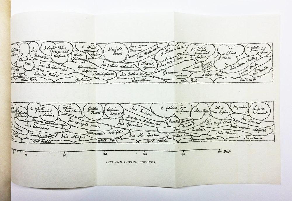 planting plan by Gertrude Jekyll