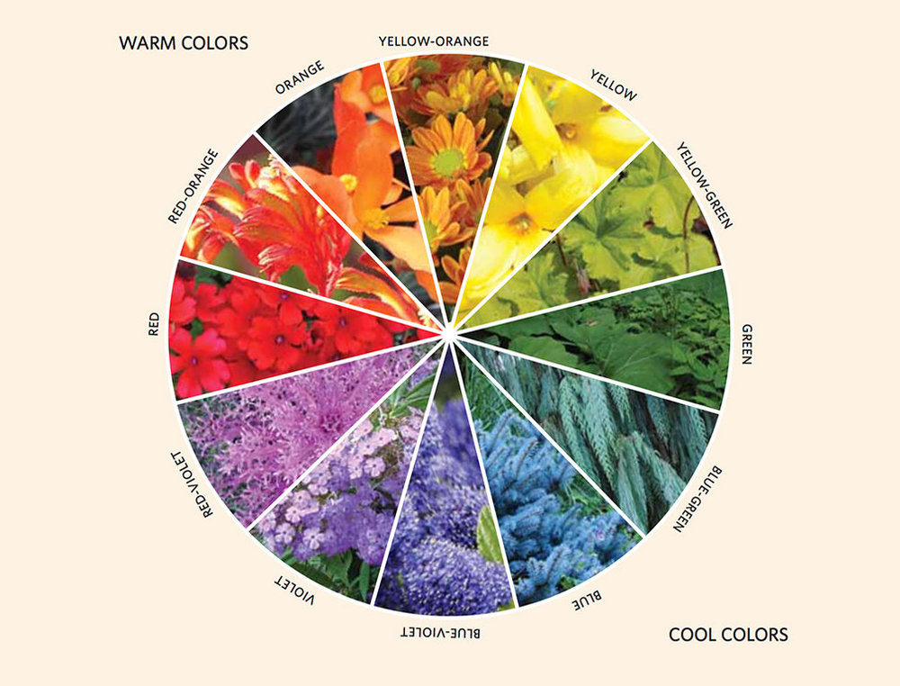 Years ago Horticulture Magazine published a color wheel for gardening