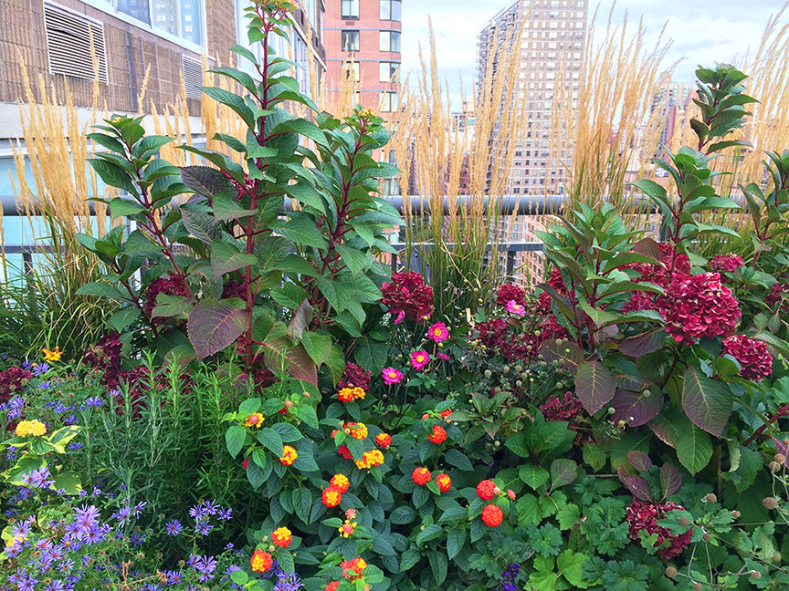 large colorful terrace planter for roof garden manhattan