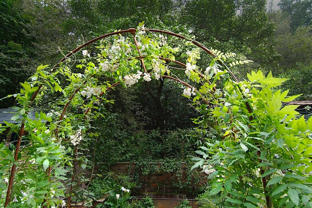 The wisteria vine climbing on this simple arbor becomes a wonderful transitional element into a garden. It draws your eye up upon entering this urban oasis garden.