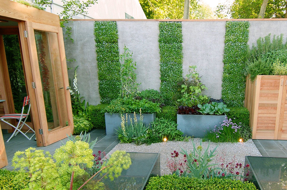 TIPS FOR VERTICAL GARDENING Todd Haiman Landscape Design