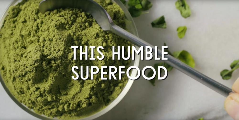 Moringa Food Trends