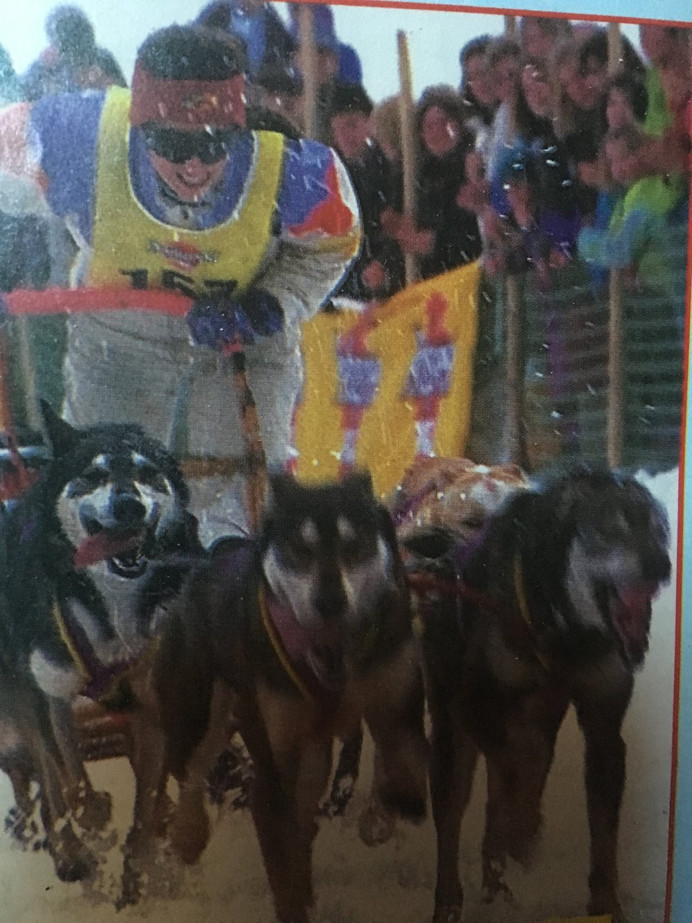 I did Sleddog sport from 1986 to 1994 -World Champion 1992 -