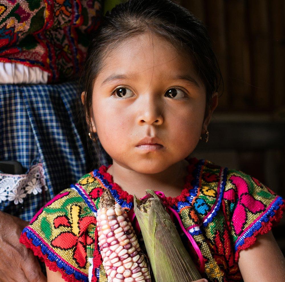 Masienda-Oaxaca-1088-Fave.jpg