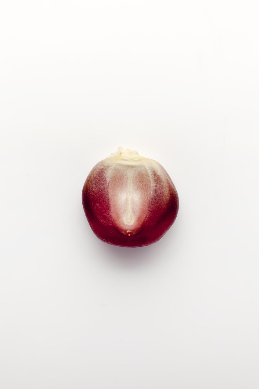 Purple Bolita