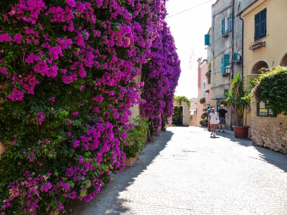 This little town is full of bougainvilleas. How beautiful!