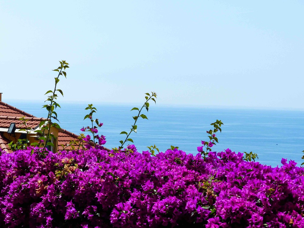 """There is a reason why Cervo is officially classed as one of the """"most beautiful villages in Italy."""""""