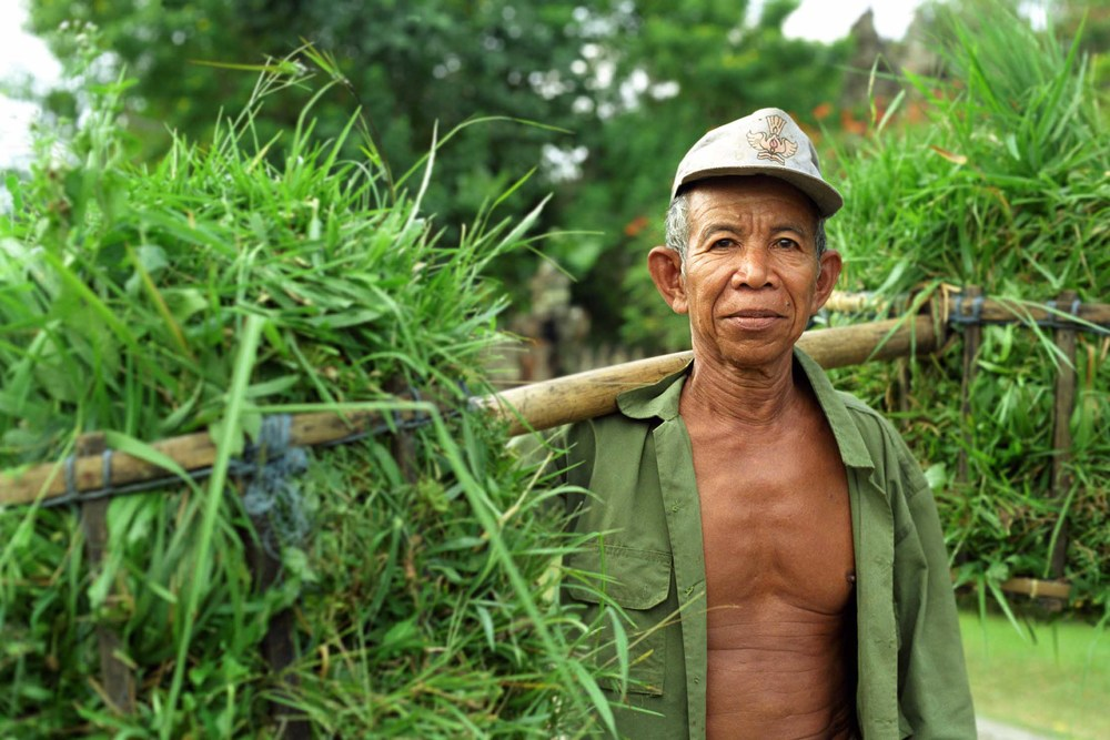 Farmer at work, Bali, Indonesia