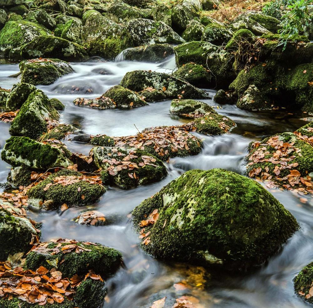 Belstone river, Devon