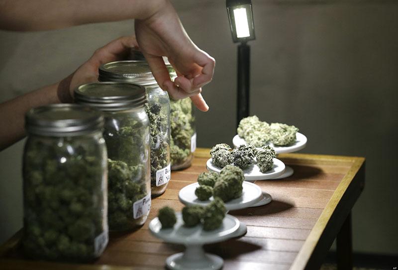 Es importante que el dispensario esté a la vanguardia y disponga de los diferentes tipos de cannabis actuales.