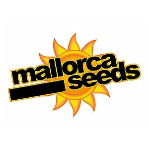 Mallorca Seeds