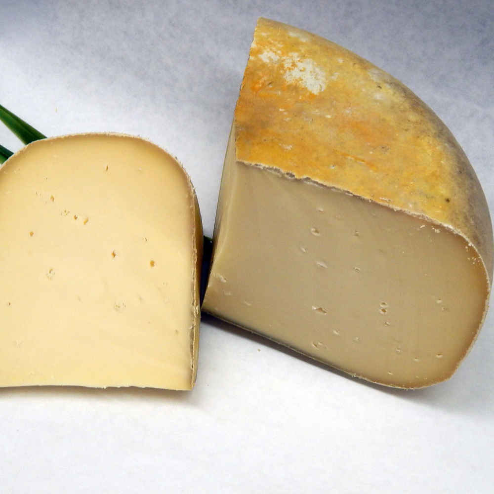 Cheese_Logo_Edited.jpg