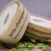 Brie, Gres Champenois  2 Wks. France