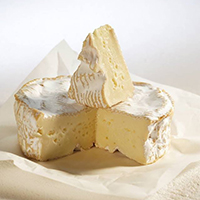 Camembert Cow France (AOC)