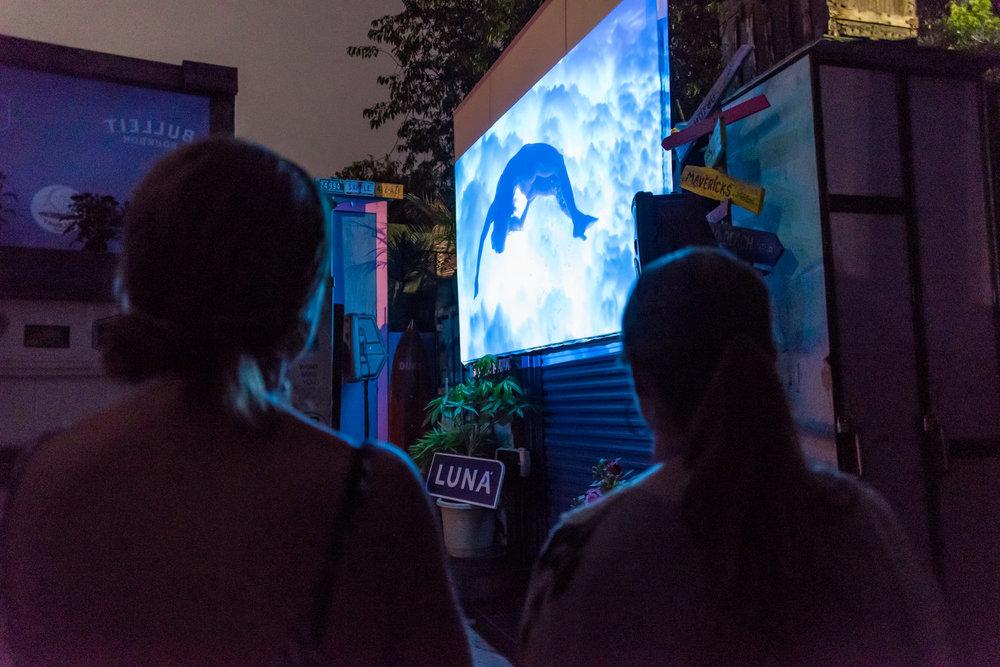 Womans.Film.Fest.Surf+--+230.jpg