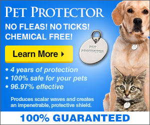 pet_protector_banner.jpg