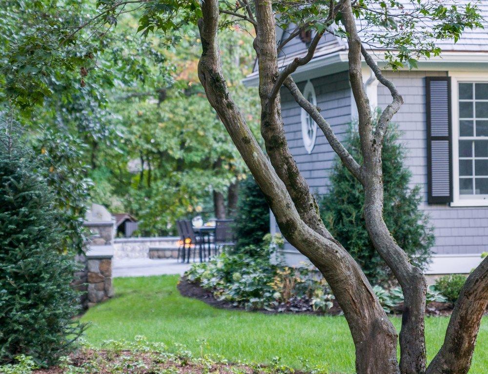 Wellesley Hills Residence