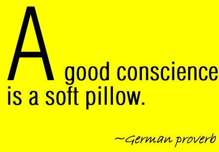 "The end of the women's Bible study focused on a good conscience which is where the devil focuses his attack.  Next week will focus more on the devil's strategy to give us a bad conscience.  But, I love this quote, ""A good conscience is a soft pillow."""
