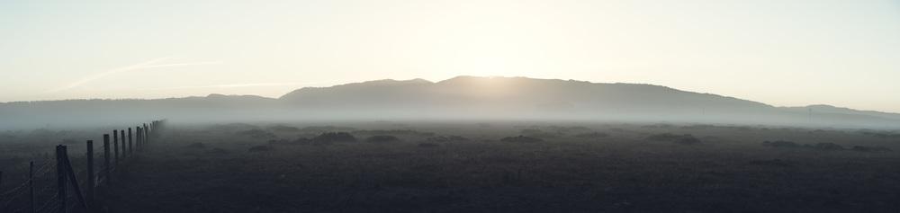 Cypress Grove-7090-Pano.jpg