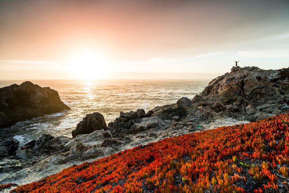 Monterey-7868.jpg